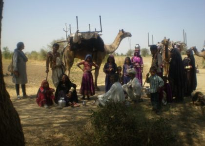 Maldhari Migration Photo Collection