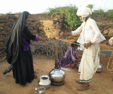 valonu-pics-maldhari-livelihood